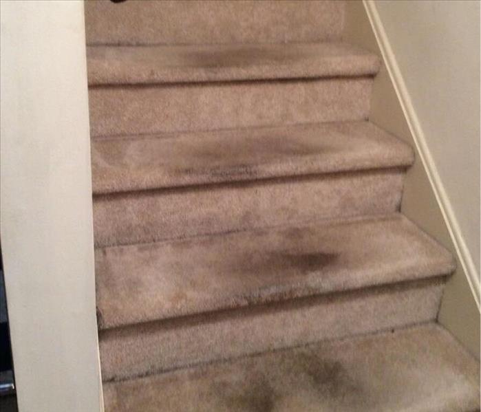 Carpet Cleaning in West Chester, PA Before
