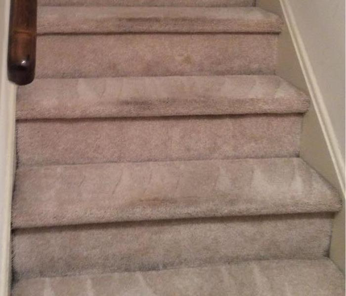 Carpet Cleaning in West Chester, PA After