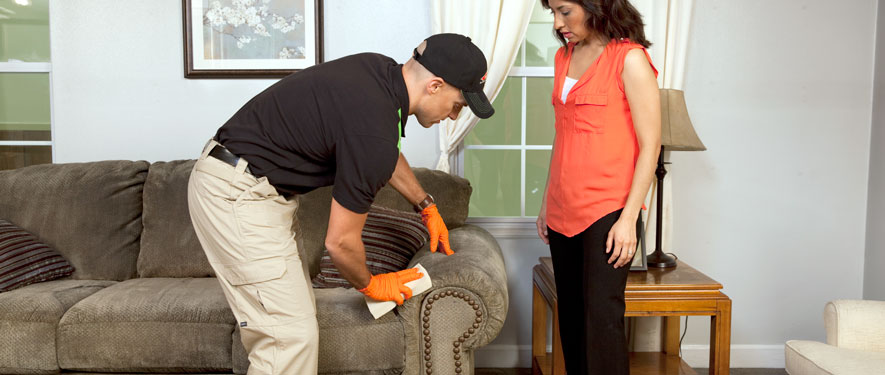 West Chester, PA carpet upholstery cleaning